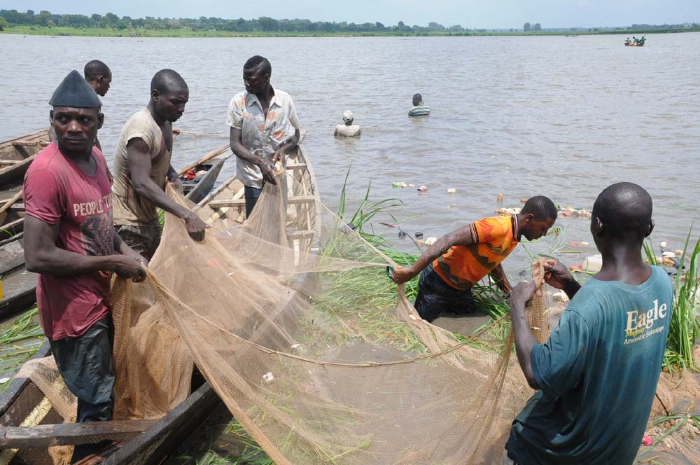 Illegal fishing : West Africa loses $6.5b annually – Report