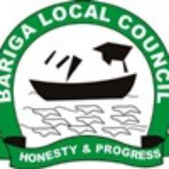 Malaria: Bariga LGA boss advises on regular checkup, screening