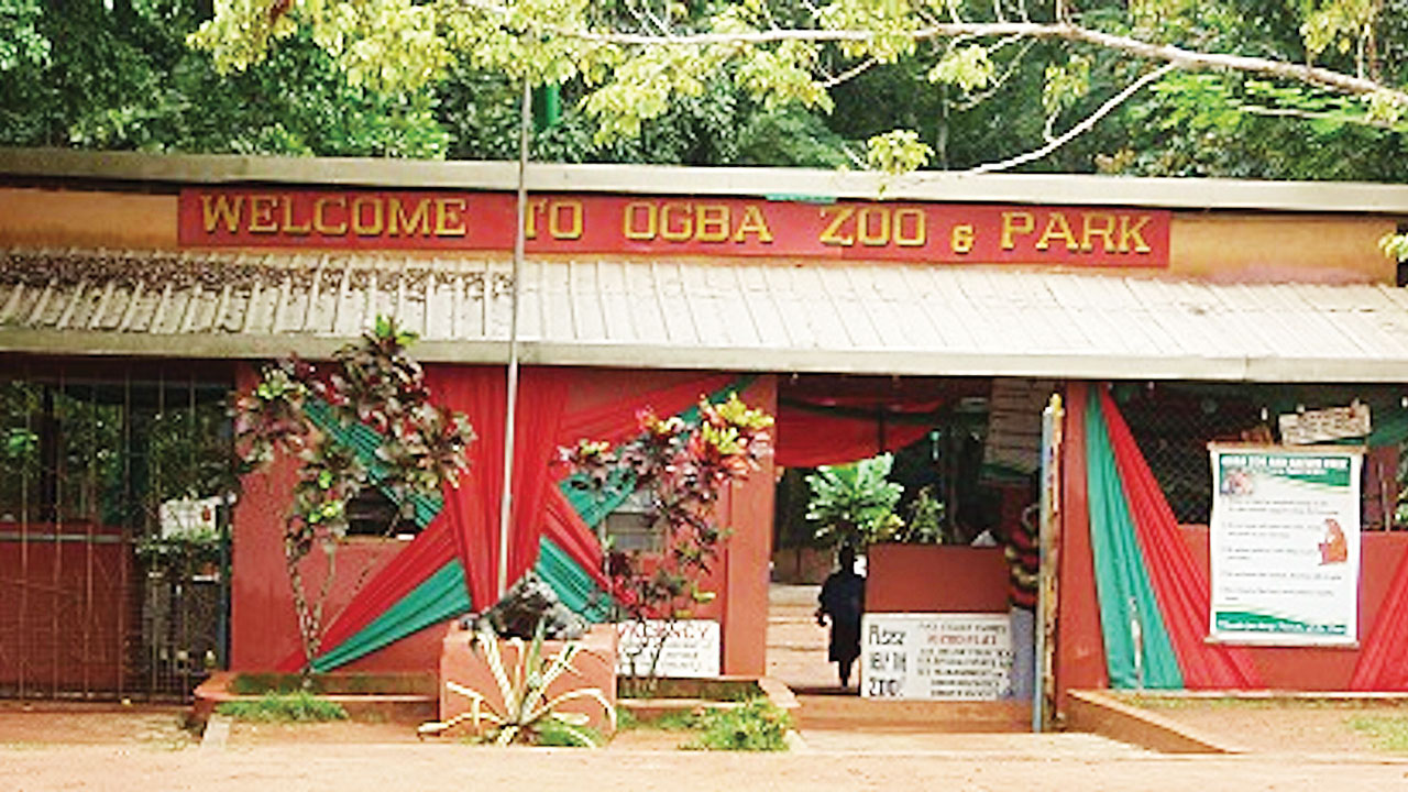 Abducted Benin zoo manager Andy Ehanire regains freedom