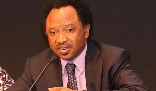 Shehu Sani urges Arewa to support Buhari