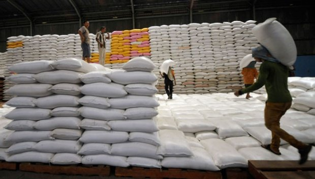 'Stop eating imported rice' – Aregbesola