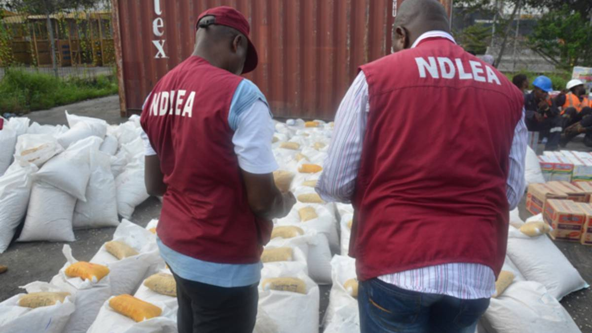 NDLEA Arrest 234 Suspects, Seize 7,550kg Indian Hemp