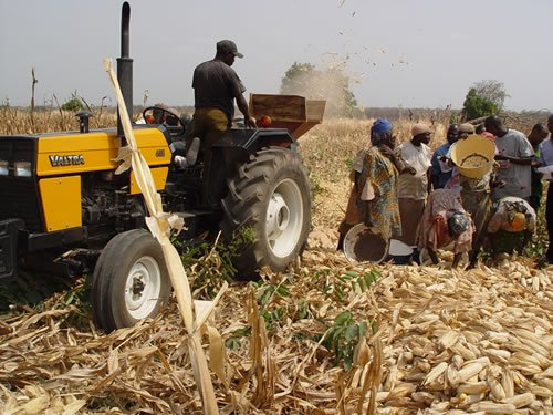 FG to restructure Bank of Agriculture