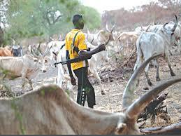 Suspected Fulani militiamen attack Goska town in Kaduna
