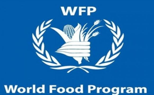 192,300 Nigerian children benefit from WFP Programme – Official
