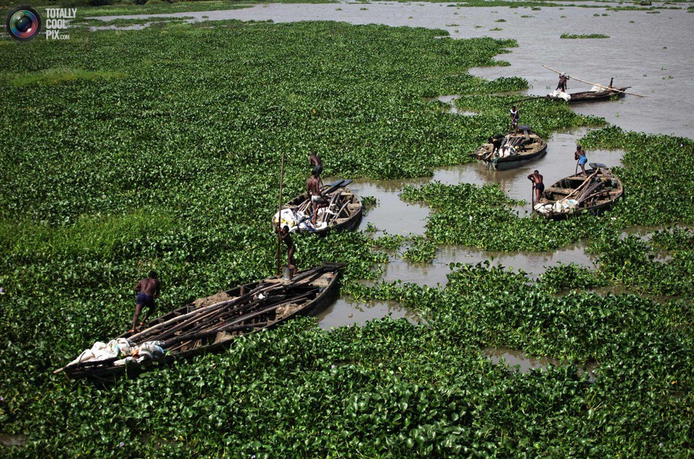 Ogun fisherman task FG on diversification