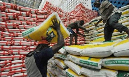 Rice production: Expert believes Nigeria can meet local demand
