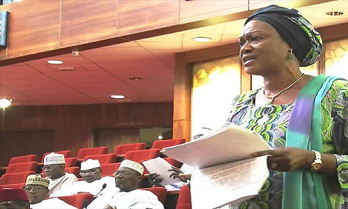 Senate asks Executive to pay arrears to contractors