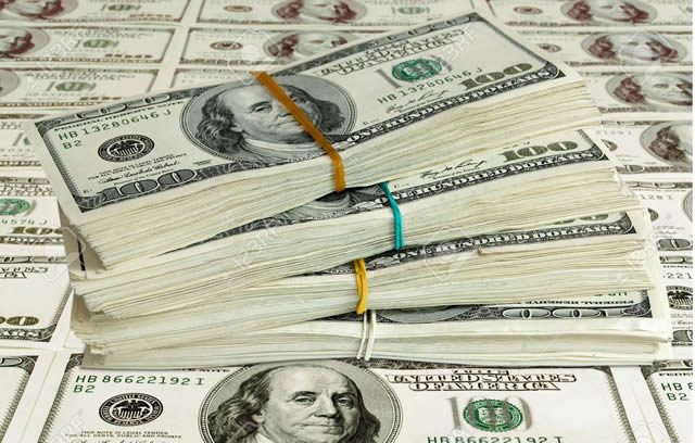 Dollar steadies as focus turns to job data