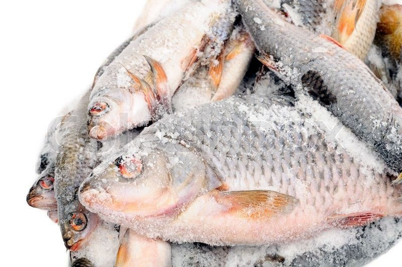 Idiroko Customs Command intercepts imported frozen fish