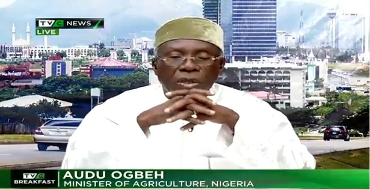 Nigerians importing poverty by importing food – Ogbeh