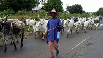 Herdsmen attack: Ondo non indigenes protest against death of farmer