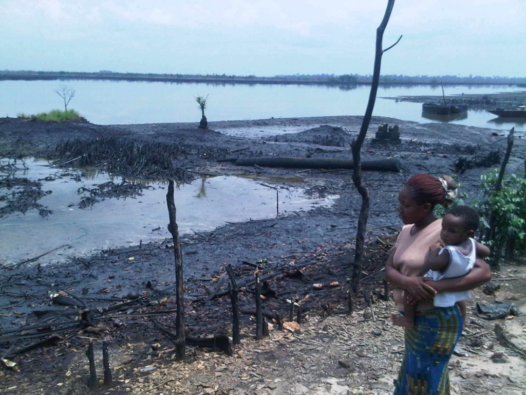 Environmental laws: Rivers activists call for stronger measures in Niger Delta