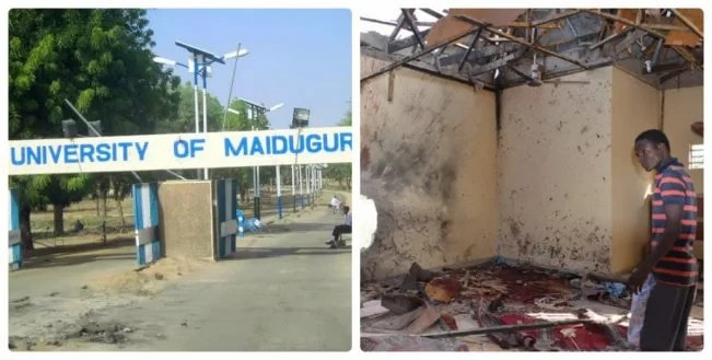 16 killed as suicide bombers attack University of Maiduguri