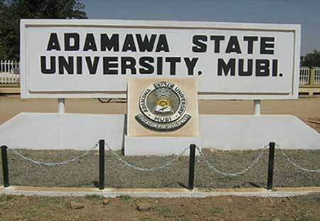 Adamawa University's Unions begin indefinite strike