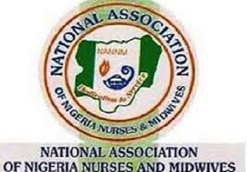 Association empowers displaced, retired nurses in Borno