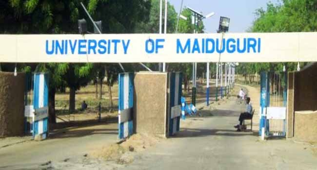 Insurgency: Police tighten security at University of Maiduguri