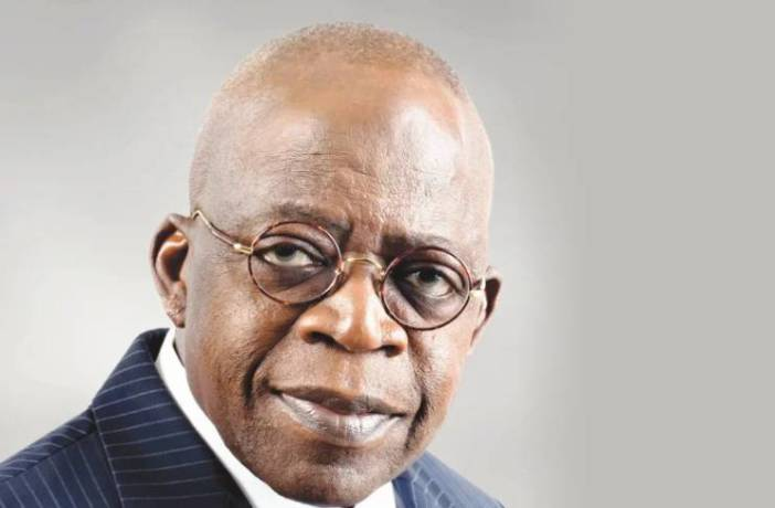 Continue to work for Nigeria's unity – Tinubu tells Senators