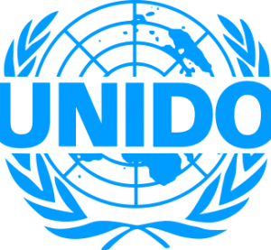 UNIDO makes case for right policies to help industries