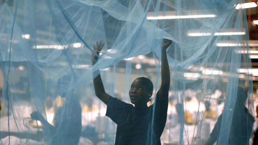 Preventing malaria : Osun to distribute 3 million insecticide nets