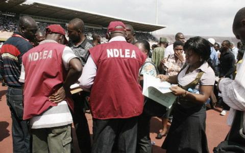 NDLEA apprehends inter-border drug Vendor in Adamawa