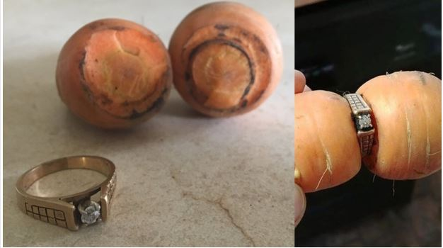 Woman's Lost Engagement Ring Found 13 Years Later – On A Growing Carrot