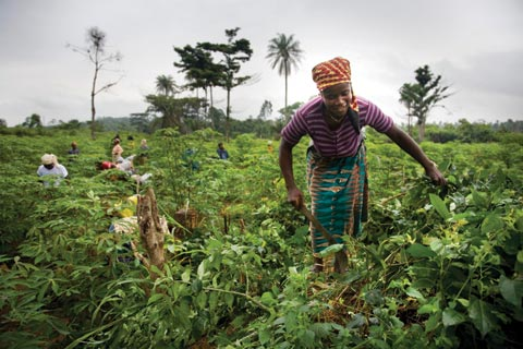 Group calls for special funding for female farmers