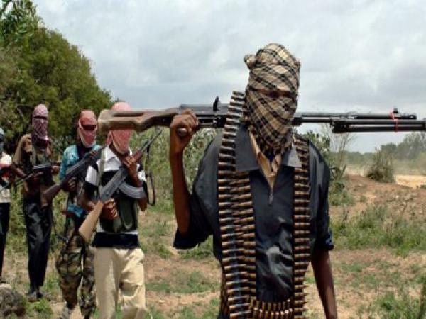 Gunmen kill nine, abduct seven in Adamawa State