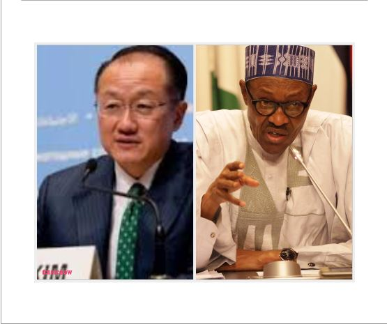 We focused on the Northern Nigeria on Buhari's order – World Bank
