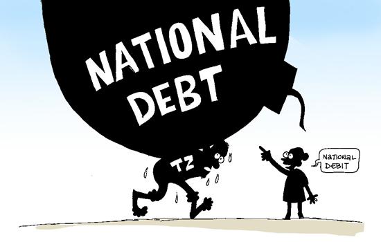 Tanzania's public debt rises by 15 pct