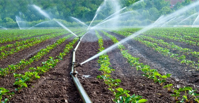Food security : Water resources ministry launches irrigation development Programme