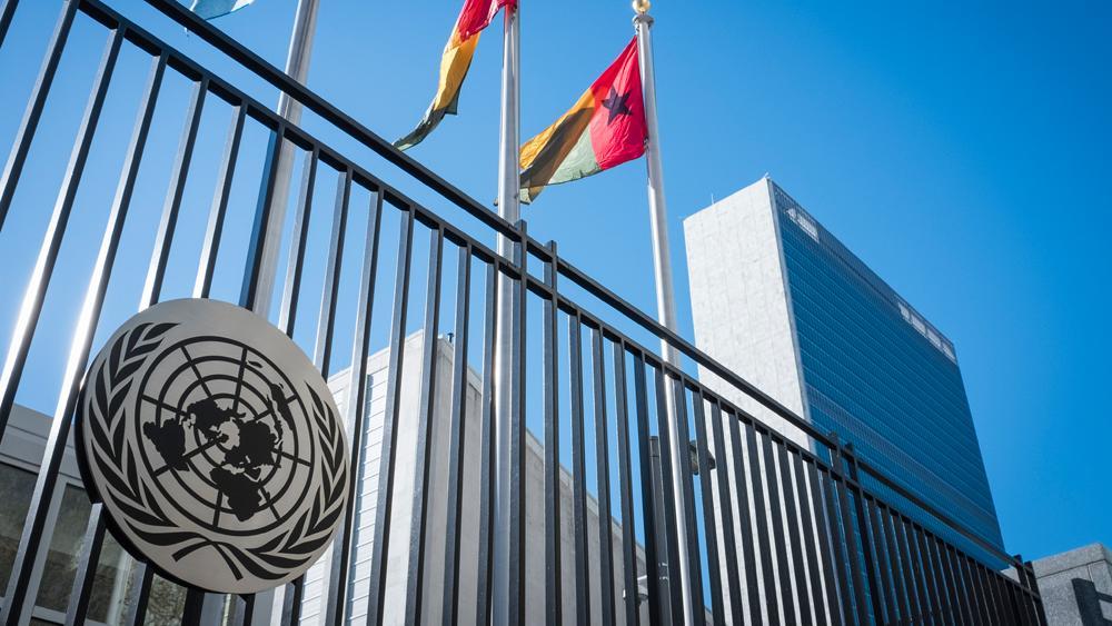 UN appoints Nigeria's Obiakor, special investigator for Burundians' killings