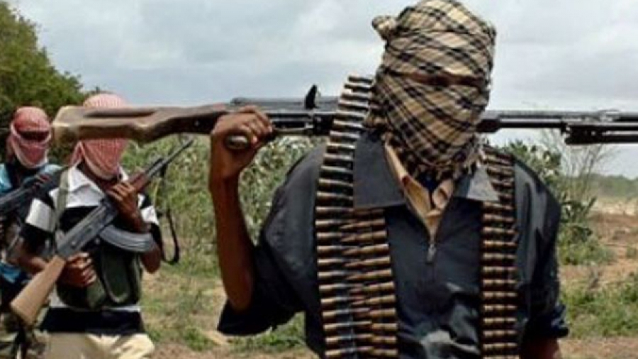 Suspected Fulani militiamen kill 4, raze down Adamawa village