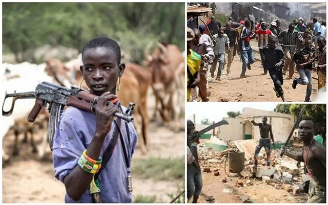 Amnesty Int'l calls for lasting solution to Farmers/Herdsmen crisis