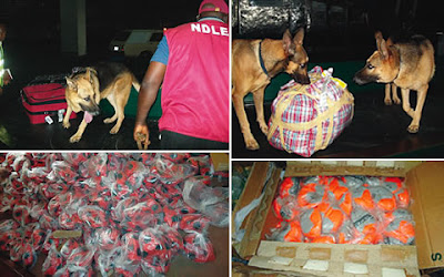 NDLEA calls for regional, multilateral cooperation against drug trafficking