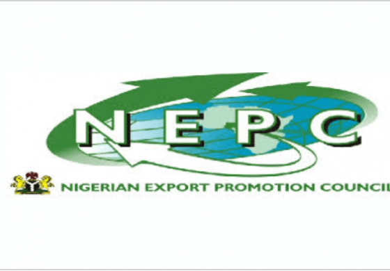 NEPC, Mall for Africa create platform for women