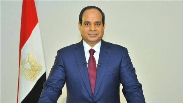 Egypt's Sisi wins 92 pct of votes in presidential election, initial result shows