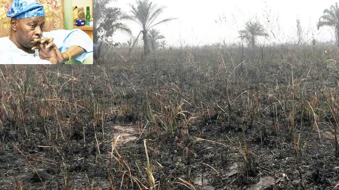 Police confirm burning of Falae's farm, begin investigation
