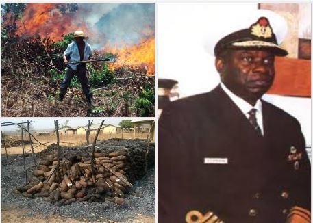 'Some Herdsmen were sponsored to destroy over N200m worth of my farmland' – Ex-Naval Staff