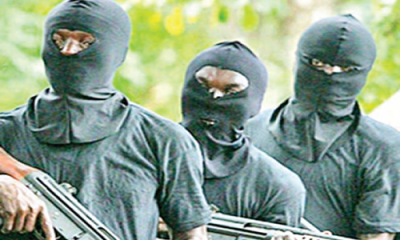 Massacre in Zamfara: Bandits allegedly killed 41 people who invaded Birane