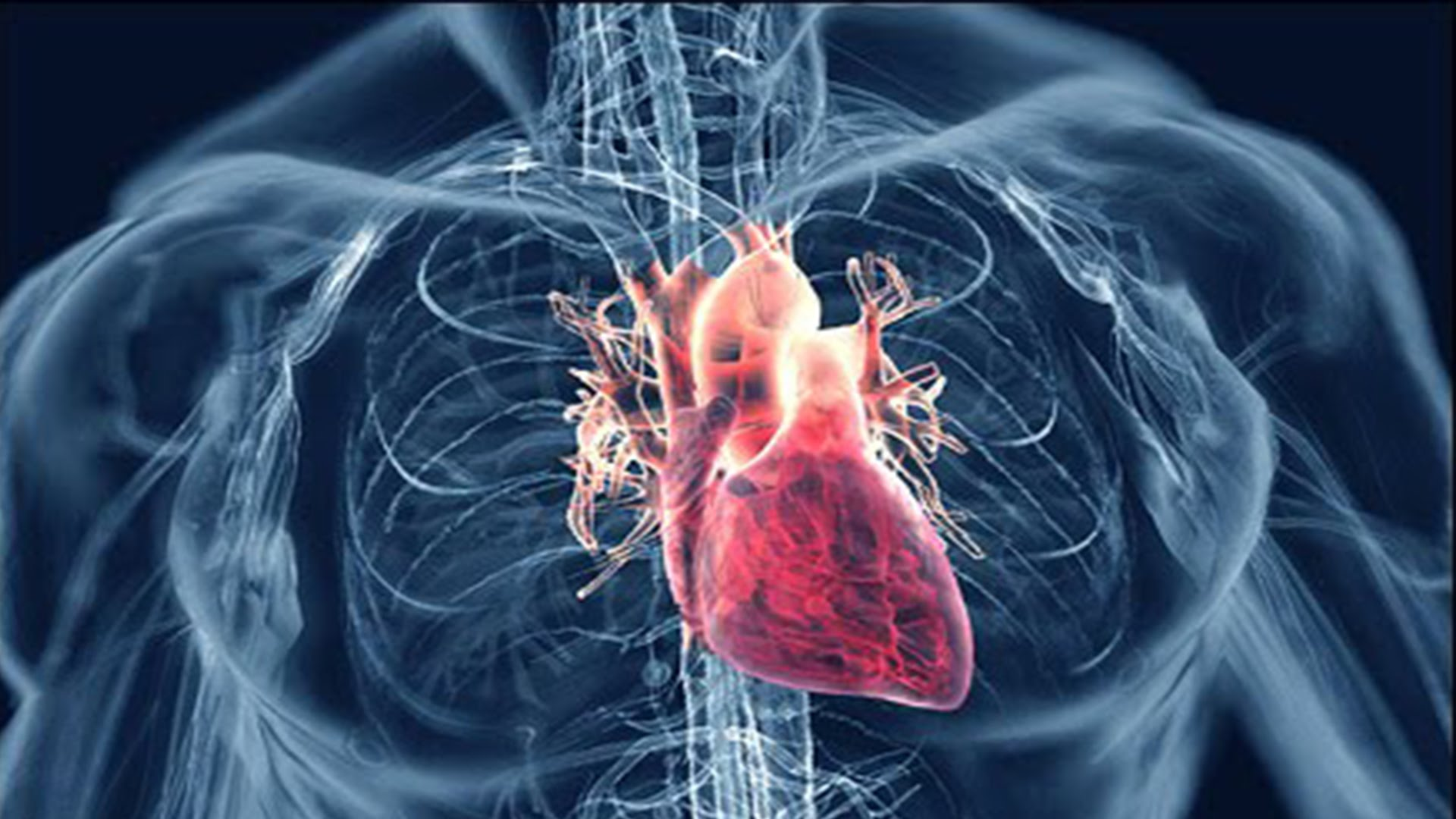 Heart diseases : Cardiologists caution against smoking, alcohol
