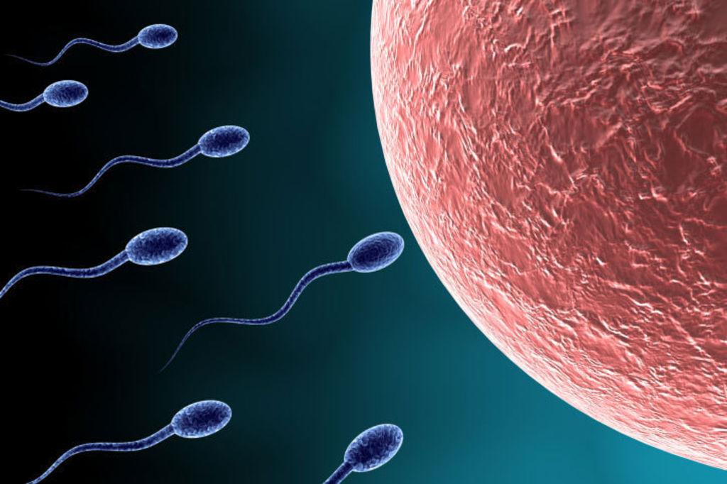 How infertility treatment has left sperm science behind