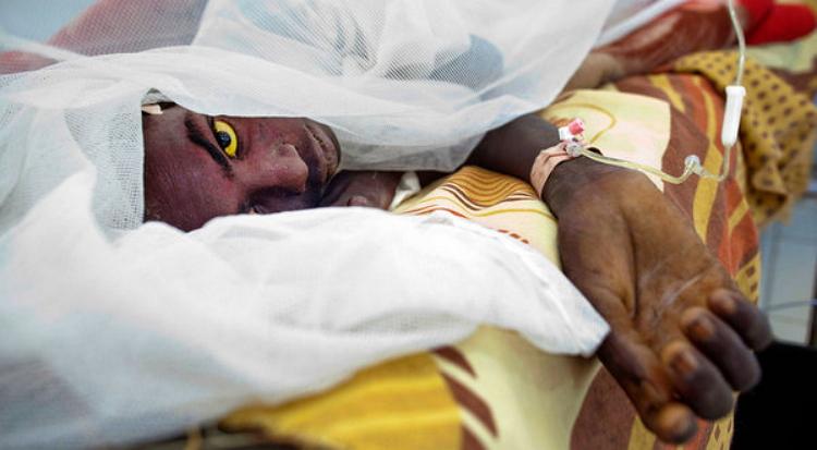 Katsina begins Campaign for prevention of meningitis