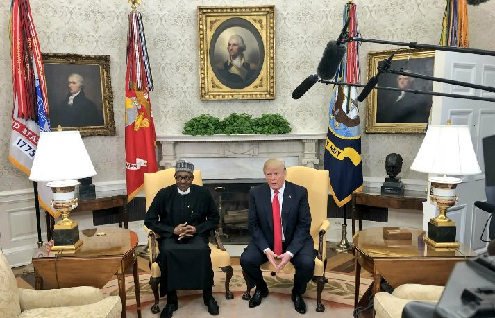 Buhari discusses economy, military ties with Trump in White house