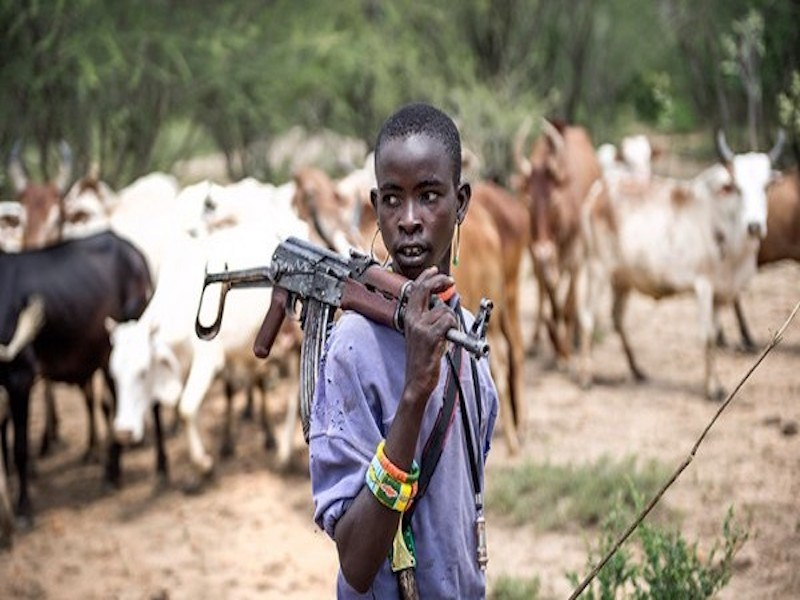 Suspected armed herders kill family of five in Taraba