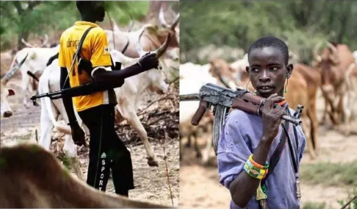 Herdsmen kill 3 police officers, two vigilantes in Taraba