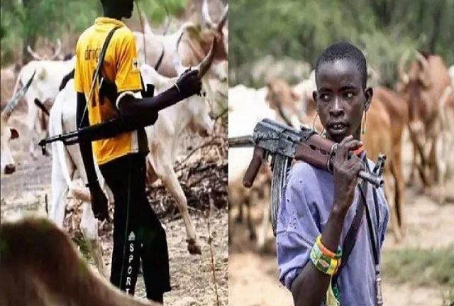 Two NECO students, seven others killed in Guma, Logo LGAs