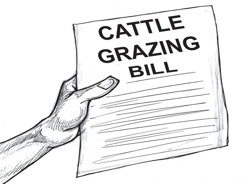 Abia state assembly passes anti-open grazing bill into law