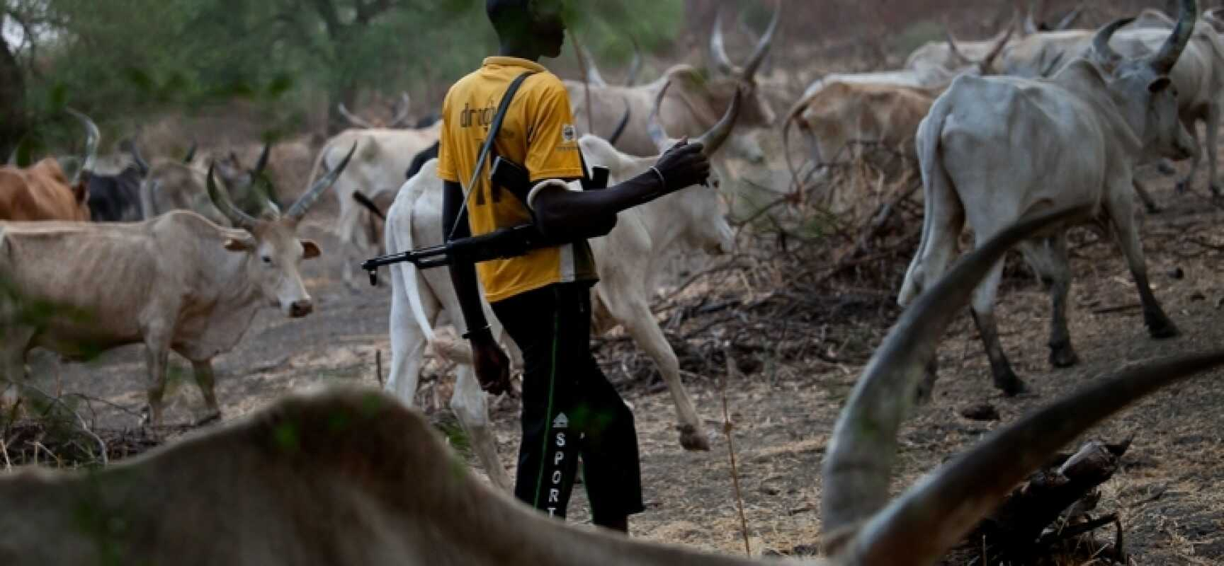 12 killed in an ambush attack by suspected herdsmen in Adamawa.
