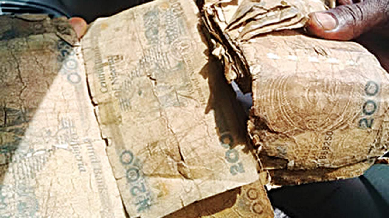 Lawmakers want CBN to withdraw mutilated naira notes from circulation